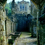 Rievaulx Abbey: Tanning Vats in what was the Dormitory at Rievaulx Abbey.