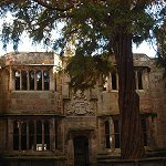 Yew Tree in Conduit Court at Skipton Castle.  Planted by Lady Anne Cliford in 1659.