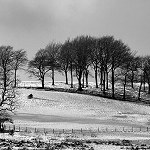 142: Winter Scene (Priestly Clough, Accrington)