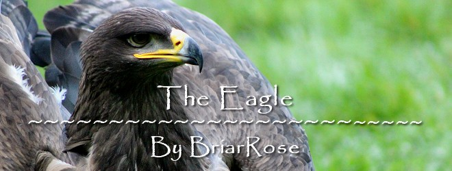 The Eagle by BriarRose