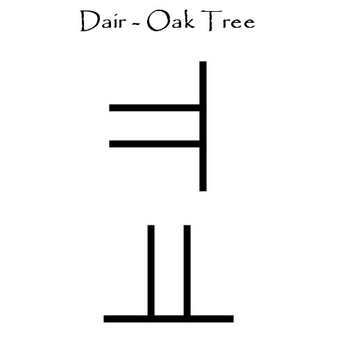 Dair - The Oka Tree