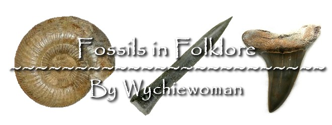 Fossils in Folklore