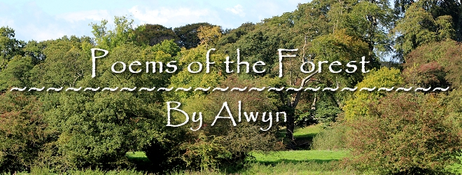 Poems of the Forest