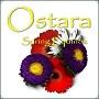 Ostara Spring Equinox